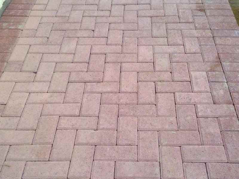 Tan Bevel Pavers Randburg